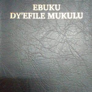 Bible en langue